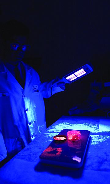 CBP lab personnel apply ultraviolet light to see things not normally visible to the naked eye.