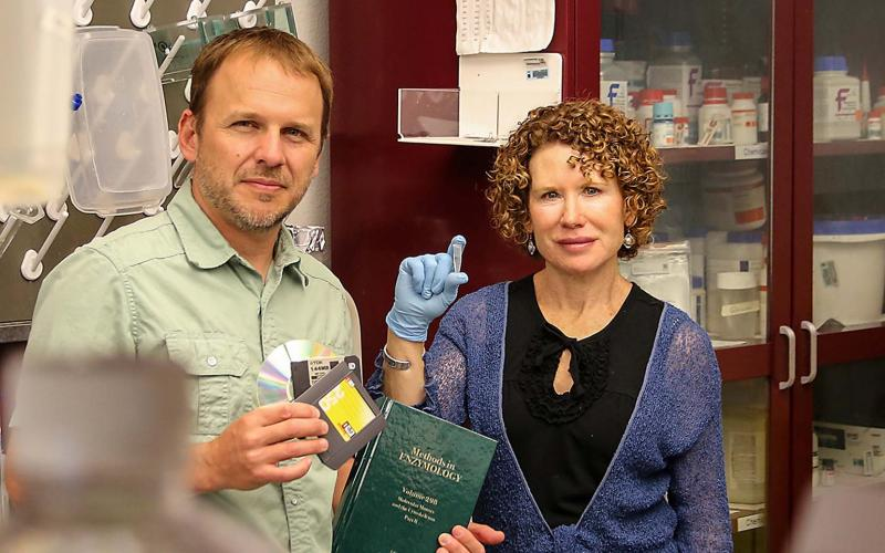 Sandia scientists Marlene and George Bachand show off their new method for encrypting and storing sensitive information in DNA. Digital data storage degrades and can become obsolete, and old-school books and paper require lots of space. (Photo by Lonnie Anderson)