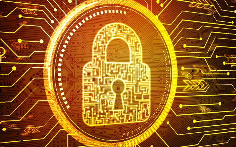 """Cyber adversaries are creating a """"wild west"""" environment in cyberspace where organizations must be aware of their security to protect themselves, said Gene Yoo, CEO of Resecurity Inc. Credit: Shutterstock"""
