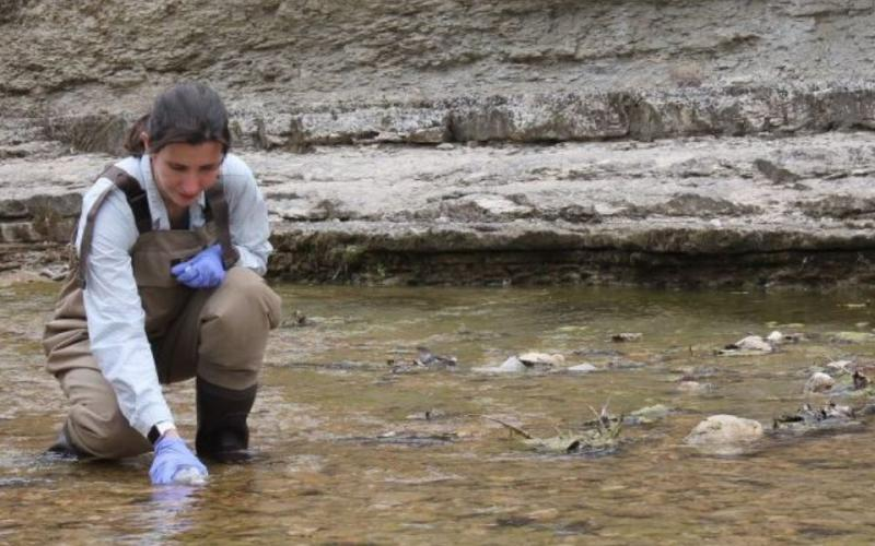 An expert collects a sample of surface water on an Army installation in Texas to test for DNA of endangered species. This avoids having to interact with the species, which aids in Army efforts at preservation. Researchers with the National Defense Center for Energy and Environment, which is run by the U.S. Army Environmental Command, have helped develop alternatives to materials that are harmful to the environment. One such effort demonstrated that citric acid could replace nitric acid in industrial process