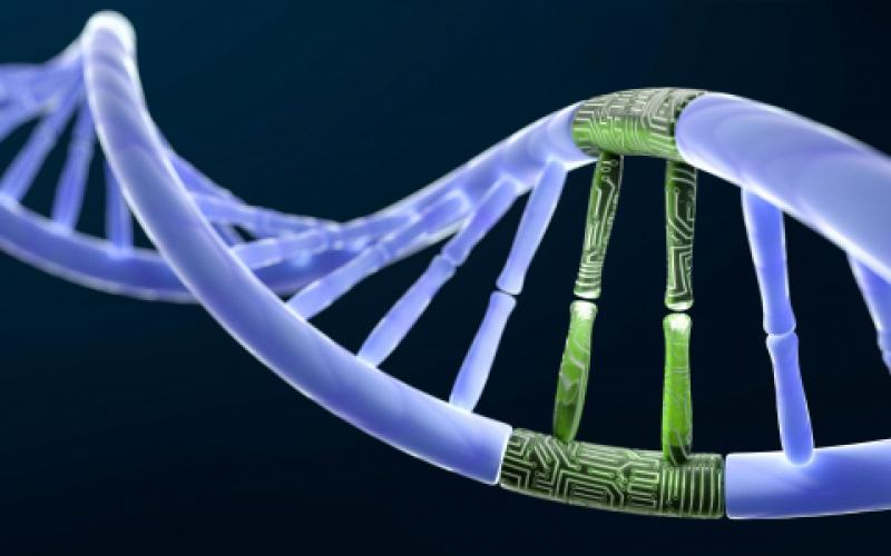 The National Science Foundation is tackling an array of challenges associated with integrating DNA and silicon chips to advance the science of DNA-based data storage. New technologies are needed to handle the massive amounts of worldwide data generated each year.  microstock3D/Shutterstock