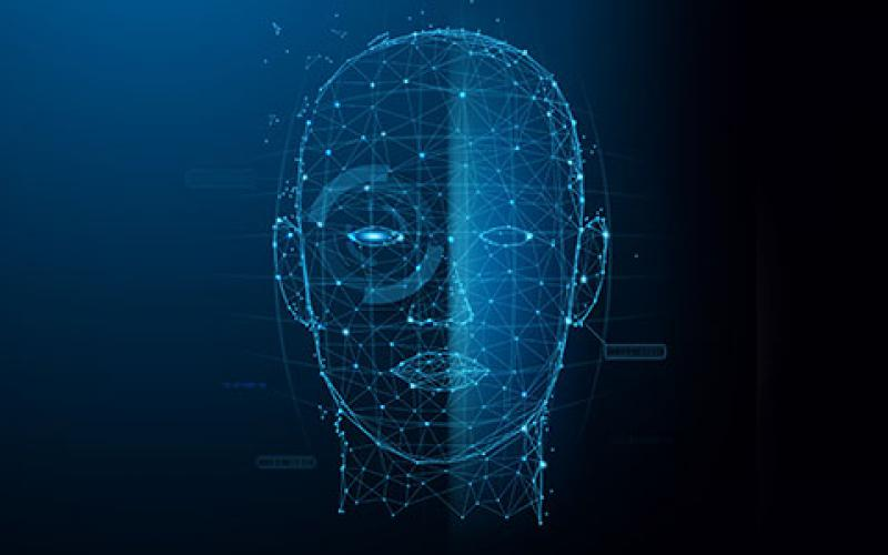 The Homeland Security Department's Science and Technology Directorate has announced the third Biometric Technology Rally, which will be used to search for systems capable of identifying individuals in crowds. Credit: Illus_man/Shutterstock