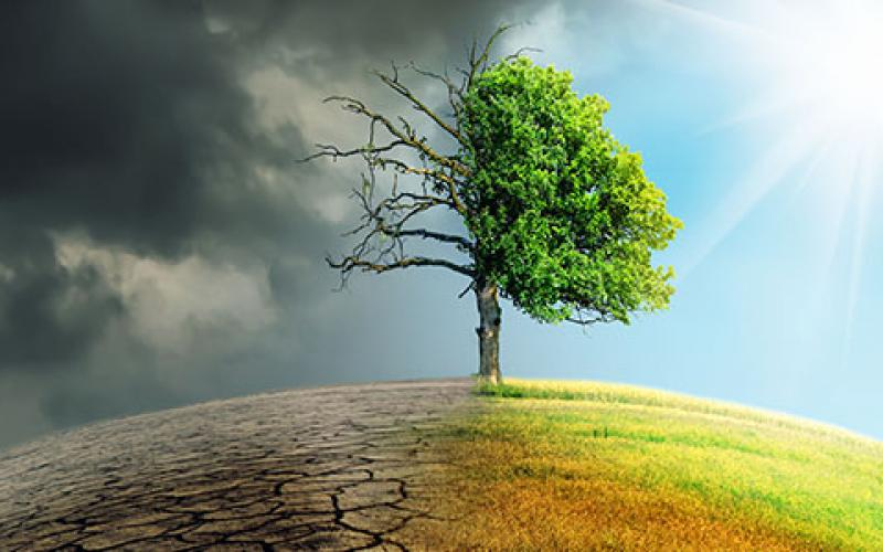 Climate change and the damage it inflicts have profound implications to national security, experts say. Credit: Shutterstock/Sepp Photography