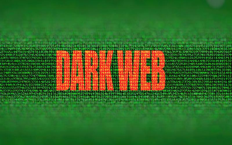 Characteristics of cyber actors give clues as to who poses a credible threat, experts say. Credit: Shutterstock/BABAROGA