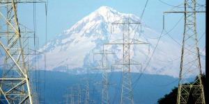 Part of the power grid is supported by electrical lines that carry power to customers through rugged terrain. Cybersecurity experts believe supervisory control and data acquisition (SCADA) systems may be the Achilles' heels that allow malefactors to bring down such critical infrastructure via cyberspace.