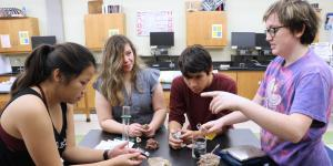 Boerne-Samuel V. Champion High School students (l-r) Gifford, Salas, Medina and Sara Owen conduct a lab on sedimentary rocks using new supplies purchased with a grant funded by the Alamo Chapter.