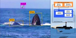 DARPA's contract with Charles River Analytics will further develop an advanced marine mammal detection system. Credit: Charles River Analytics