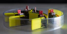 """Five identical """"smarticles"""" interact with one another in an enclosure. By nudging each other, the group—dubbed a """"supersmarticle""""—can move in random ways. The research could lead to robotic systems capable of changing their shapes, modalities and functions. Credit: Rob Felt, Georgia Tech"""